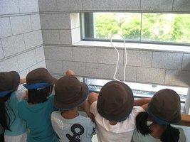 2014.7.15江東区元加賀小学校 burogu.jpg