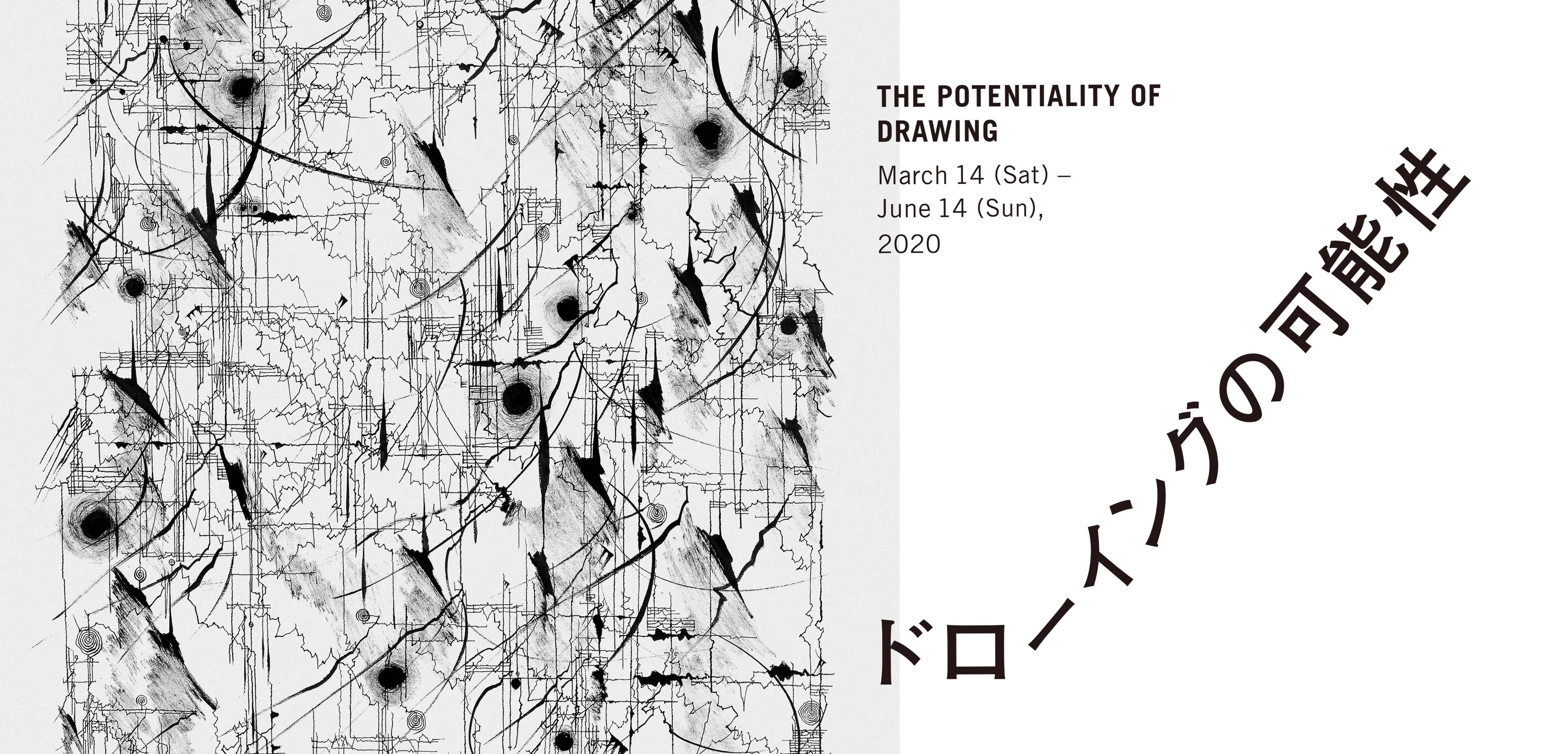 The Potentiality of Drawing