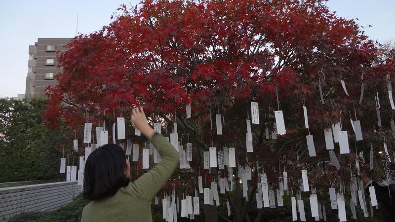 wish tree 2018kiroku small.jpg